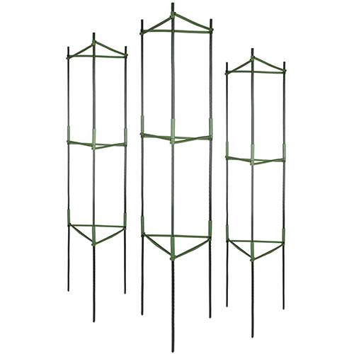 1. GROWNEER 3-Pack Plant Cages Assembled Tomato Garden Cages Stakes Vegetable Trellis, with 9Pcs Clips and 328Ft Twist Tie