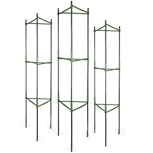 5. GROWNEER 6 Packs Plant Cages Assembled Tomato Garden Cages Stakes Vegetable Trellis, with 18Pcs Clips and 328Ft Twist Tie, for Vertical Climbing Plants